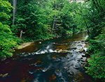 Riffles in Jessup River flowing through Deciduous Forest, Adirondack Park, Lake Pleasant, NY