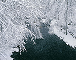 Tully River during a Snowstorm, Royalston, MA