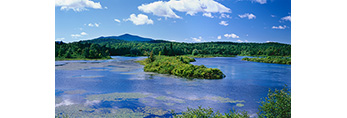 Hudson River under Blue Skies and White Puffy Clouds, Adirondack Park, Newcomb, NY