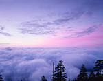 Above the Clouds from Clingmans Dome, Great Smoky Mountains National Park, NC