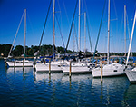 Sailboats at Slips in Regent Point Marina, Rappahannock River, Chesapeake Bay, Middlesex County, Regent, VA
