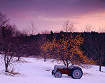 Predawn over Tractor and Apple Tree in Early Winter, Royalston, MA