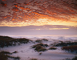 Atlantic Ocean and Dunes on Ocracoke Island at Sunrise, Cape Hatteras National Seashore, Outer Banks, NC