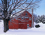 Red Barn and Sugar Maple in Winter at Little Creek Farm, New Salem, MA