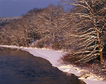Forest Edge along Millers River after Snowstorm, Orange, MA