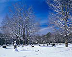 Cemetery and Sugar Maples after Snowstorm, Phillipston, MA