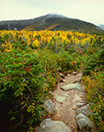 Chimney Pond Trail and Mt. Katahdin, Baxter State Park, ME