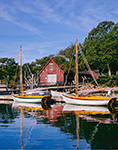 Red Boat House and Hereshoff Sailboats at Dock, Naushon Island, Elizabeth Islands, Town of Gosnold, MA