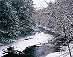 Ompompanoosuc River and Bordering Forest in Winter, Thetford, VT