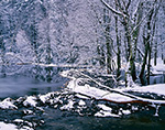 Beaver Dam on Mirey Brook in Winter, Mt. Grace State Forest, Warwick, MA