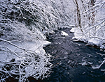 Roaring Brook after Fresh Snowfall, Winchester, NH