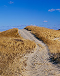 Old Fire Road Over and Into Dunes, Cape Cod National Seashore, Truro, Massachusetts