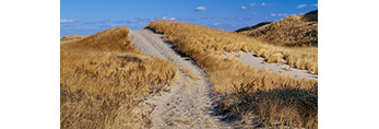 Old Fire Road Over and Into Dunes, Cape Cod National Seashore, Truro, MA