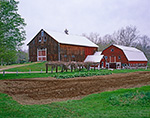 Old Red Barns with Freshly-tilled Garden in Spring, Pioneer Valley, Montague, MA