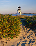 Brant Point Light and Rosehips, Nantucket, MA