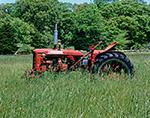 Super C McCormick Farmall Tractor in Hayfield of Tall Grasses, Martha's Vineyard, West Tisbury, MA