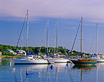 Sailboats in Oak Bluffs Harbor, Martha's Vineyard, Oak Bluffs, MA