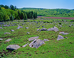 Rocky Pasture and Newly-plowed Fields on Dairy Farm in Spring, Washington, NH