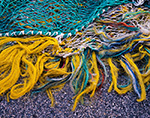 Colorful Strings of a Fishing Net, Stonington Harbor, Stonington, CT
