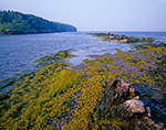 Seaweed, Grasses and Rocks along Shoreline of Little Jewell Island with Jewell Island on Left, Casco Bay, Portland, ME