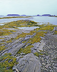 Rocky Shoreline with Seaweed on Eastern Island of The Goslings looking out to Whaleboat and Little Whaleboat Islands, Casco Bay, Harpswell, ME