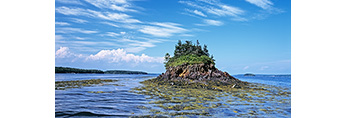 View of Irony Island with Upper and Lower Goose Islands (on left) and Shelter Island (on right) in Distance, Casco Bay, Harpswell, ME