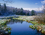 Early Spring Snow, East Branch Swift River, Petersham, MA