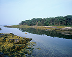 Little Whaleboat Island near Low Tide, Casco Bay, Harpswell, ME