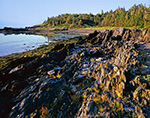 Rocky Shoreline at The Punchbowl on Jewell Island, Casco Bay, Cumberland/Portland, ME