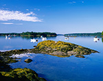 Boats in Quahog Bay near Great Island (Sebascodegan Island), Casco Bay Region, Harpswell, ME