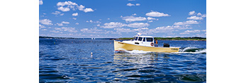Yellow Lobster Boat Working Alongside Upper Flag Island at Entrance to Potts Harbor, Casco Bay, Harpswell, ME
