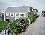 Morning Glories on White Picket Fence in Front of Wharf Houses on Old North Wharf, Nantucket Island, Nantucket, MA