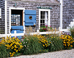 """Flower Garden in Front of Wharf House """"Nautilus"""", Old North Wharf, Nantucket Island, Nantucket, MA"""
