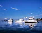 Boats with Reflections in Oak Bluffs Harbor, Martha's Vineyard,  Oak Bluffs, MA
