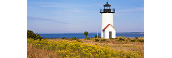 Tarpaulin Cove Light with Field of Goldenrod, Naushon Island, Elizabeth Islands, Town of Gosnold, MA