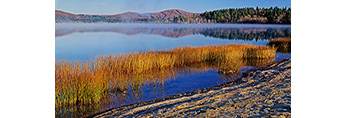 Early Light and Rushes at Lake Pleasant, Adirondack Mountains,  Speculator, NY