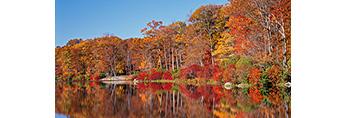 Fall Foliage along Shoreline of Lake Skannatati, Harriman State Park, Tuxedo, NY