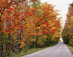 Fall Foliage along Vermont Country Road, Peacham, VT