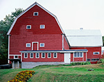 Big Red Barn with White Trim and Marigolds, Bradford, VT