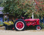 McCormick Deering Farmall Tractor with Wagon of Flowers in Late Summer, Manchester, VT