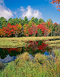 Lawrence Brook with Fall Foliage, Royalston, MA