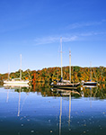 Sailboats in Hamburg Cove in Fall with Reflections in Early Morning Calm, Eightmile River, Popular Boating Spot on the Connecticut River, Lyme, CT