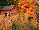 Old Abandoned Boat House in Fall in Hamburg Cove, Eightmile River, Popular Boating Spot on the Connecticut River, Lyme, CT