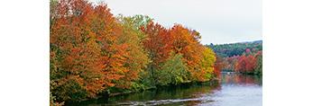 Fall Foliage along Millers River, North Quabbin Area, Orange, MA