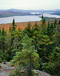 Mooselookmeguntic and Cupsuptic Lakes from Bald Mountain,  Rangeley, ME