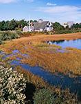 Lifesaving Museum, Marsh and Sea Myrtle, Nantucket, MA