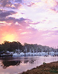Shrimp Boat Fleet at Sunrise, Darien River, Darien, GA