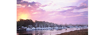 Shrimp Boat Fleet at Sunrise, Darien River, Darien, GA