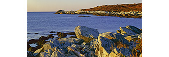 Rocky Shoreline, Sachuest National Wildlife Refuge, Middletown, RI
