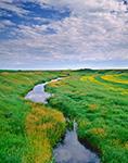 Prairie Pothole and Farmland, Bottineau County, ND